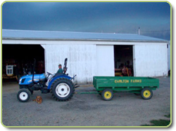 Carlton Farm tractor and wagon
